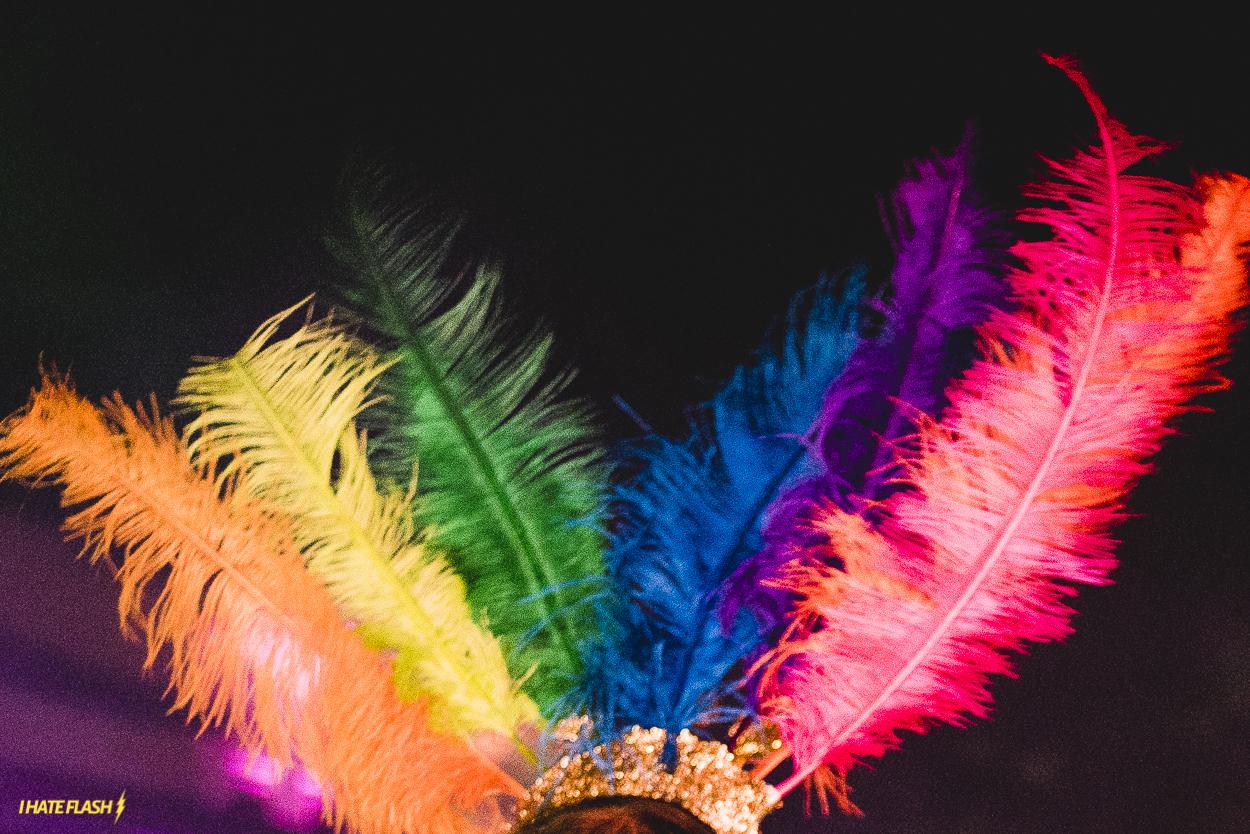 Profissão: Carnaval